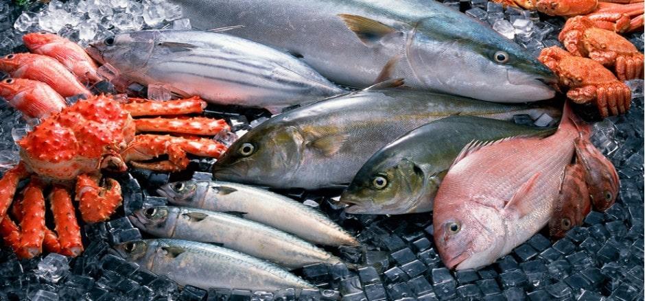 Tránh ăn cá có hàm lượng thủy ngân cao